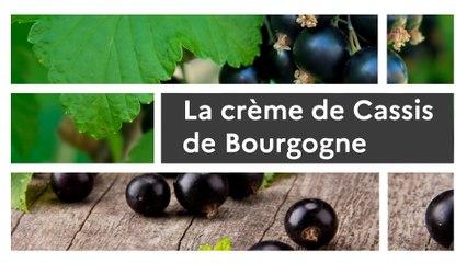 Un produit, un territoire : Tout sur la crème de Cassis de Bourgogne