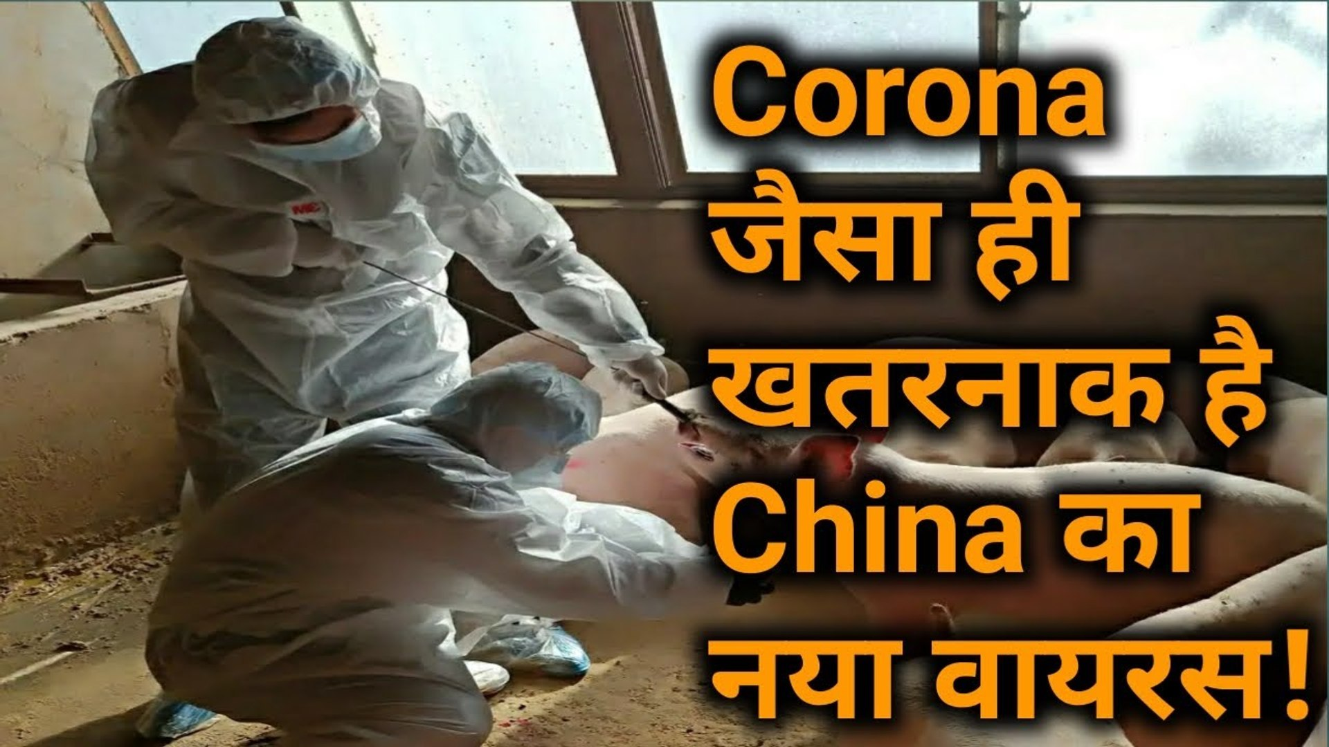 Corona संकट के बीच China में मिला नए तरह का Virus, वैज्ञानिकों की उड़ी नींद!