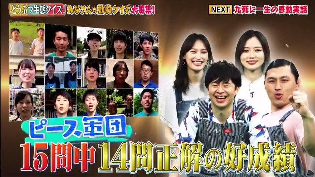 どうぶつピース  2020年7月2日 日本全国どうぶつ大好きさん生態クイズ&九死に一生SP -(edit 2/2)