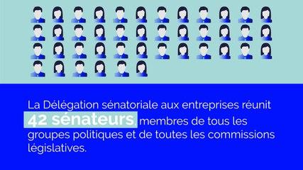 Présentation de la Délégation sénatoriale aux entreprises