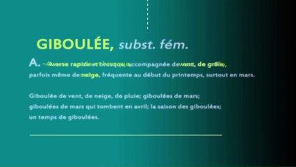 TOUT SAVOIR : LES GIBOULÉES