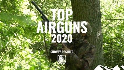 Best Airguns 2020