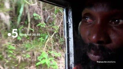 [BA] Les routes de l'impossible : Jamaïque, l'île des montagnes bleues - 17/07/2020