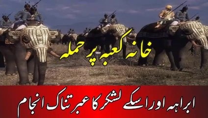 When Birds Defend KAABA (House of Allah)    Story of Ababil Birds and The Elephant