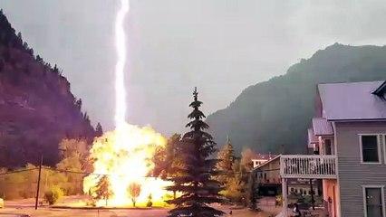 Quand la foudre détruit un arbre juste devant chez toi