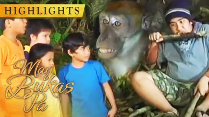 A monkey steals the lost kids' food | May Bukas Pa