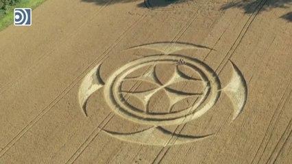 Aparece un intrigante y gigantesco símbolo de los templarios sobre un campo en el norte de Francia