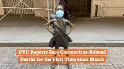 NYC Virus Update
