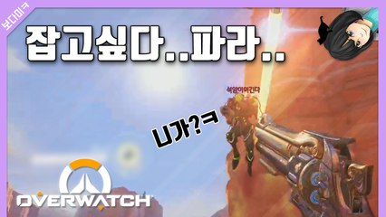 [피카TV] 잡고싶다 파라... 오버워치 (Overwatch)