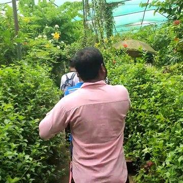 Bangabandhu Sheikh Mujib Safari Park, Video  Part - 3