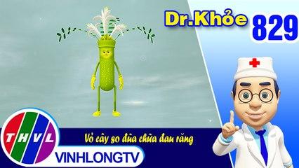 Dr. Khỏe - Tập 829: Vỏ cây so đũa chữa đau răng