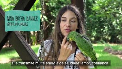 Amor de Bicho - Trailer Oficial