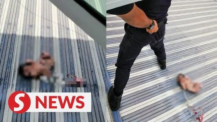 Baby boy found alive on house awning in Ipoh