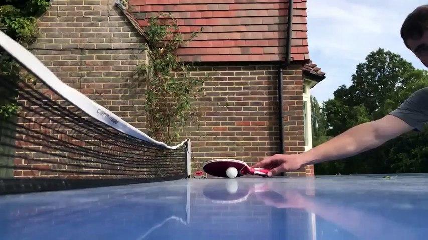 Quand un chien arbitre un match de ping-pong