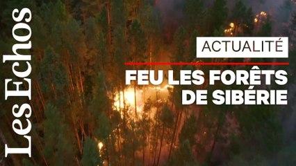 Près de 200 incendies ravagent les forêts de Sibérie