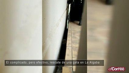 El complicado, pero efectivo, rescate de una gata en La Algaba