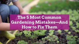 The 5 Most Common Gardening Mistakes—And How to Fix Them