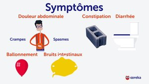 Colite : symptômes, causes, traitements