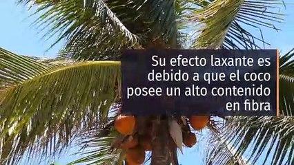 8 propiedades y beneficios del coco