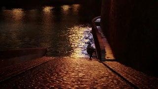 Une sirène à Paris - Vidéo à la Demande