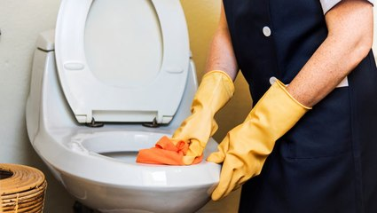 The toilet isn't the dirtiest place in your home