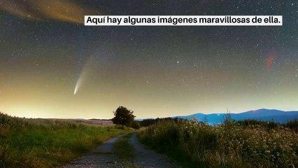 Las más bellas imágenes del cometa Neowise