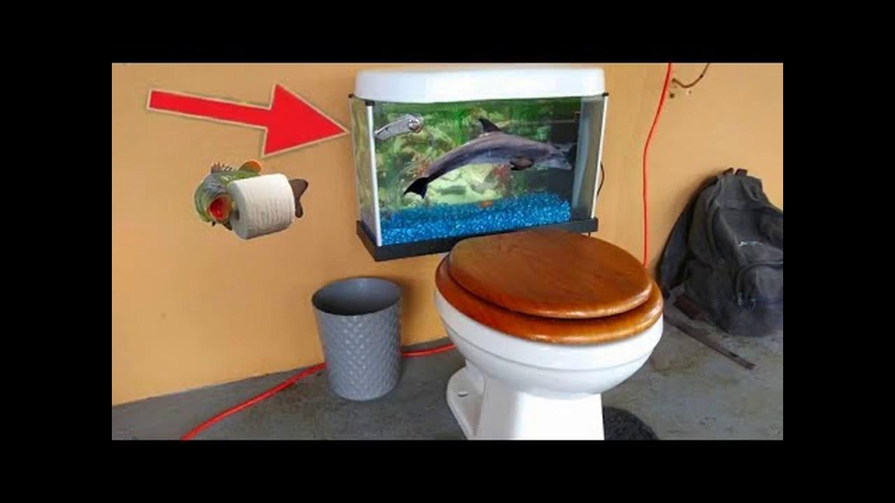 Toilet Aquarium!
