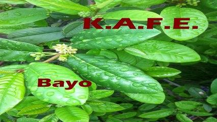 KAFE - BAYO
