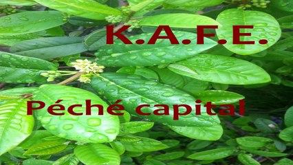 KAFE - PECHE CAPITAL