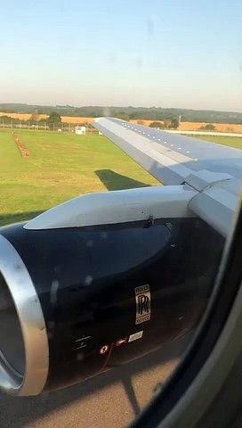 Ce pigeon est bien décidé à rester sur l'aile de l'avion... même au décollage