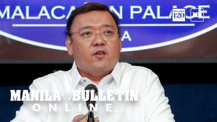 'Do not engage in panic buying,' says Roque; 'high' level of basic goods stocks assured