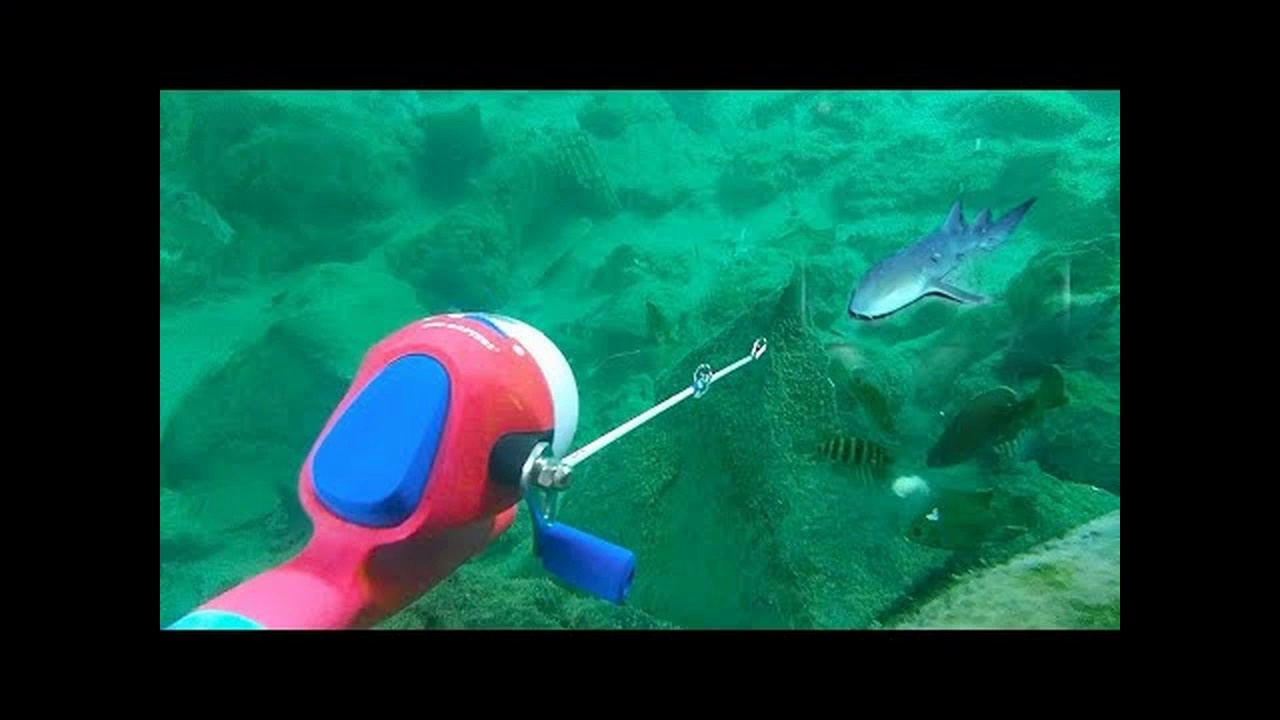 UNDERWATER Fishing Challenge!