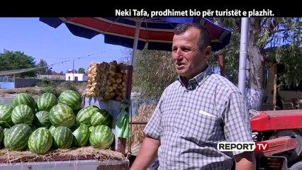 Report Tv, Veri Jug - Neki Tafa, prodhimet bio për turistët e plazhit