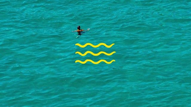 Black Foxxes - Swim
