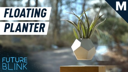 Zen out with this levitating planter — Future Blink