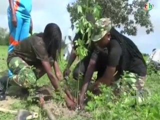 RTB /Journéenationalde l'arbre - Mise en terre de plus de 1000 plants sur lesbergesdu barrage deBagré