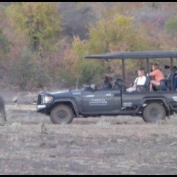 Documentary Video - Zimbabwe River And Wildlife Safari