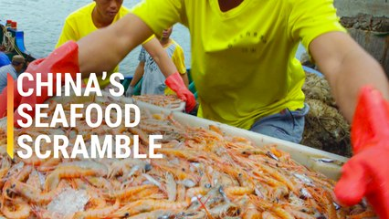 The Race to Find China's Best Seafood