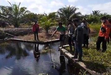 Satgas Karhutla Memeriksa Sekat Kanal Badan Restorasi Gambut