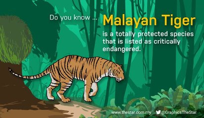 The International Tiger Day is celebrated on July 29 annually