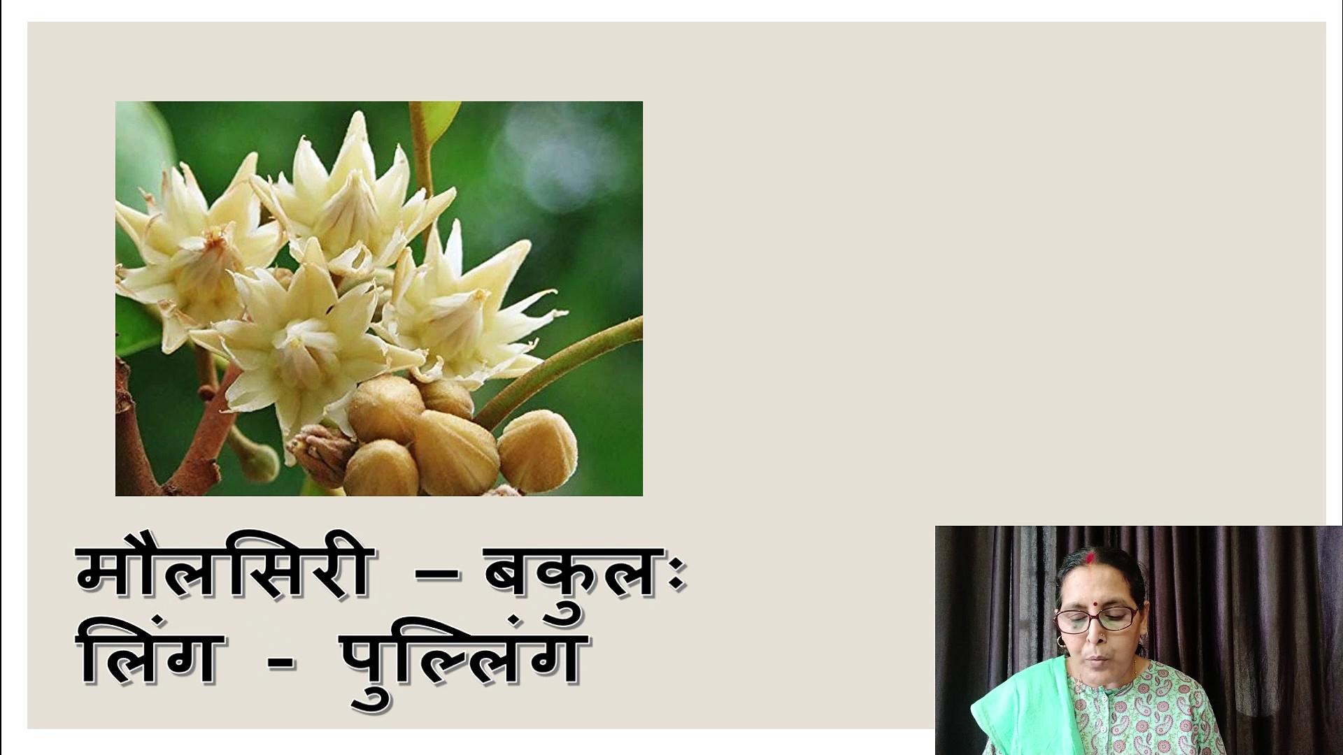 Sanskrit mein Phoolon ke naam ll Picture Sahit ll Flowers name in Sanskrit