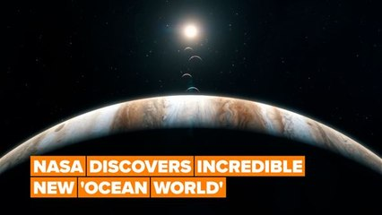 NASA has discovered yet another ocean within our galaxy!