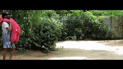 മനുഷ്യൻ v/s തിരിച്ചറിവ് | The Real Toy | Malayalam Short Film | Vineeth Koyilandy  | Sujith Paravoor