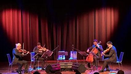 Anadolu Quartet - Sinsin