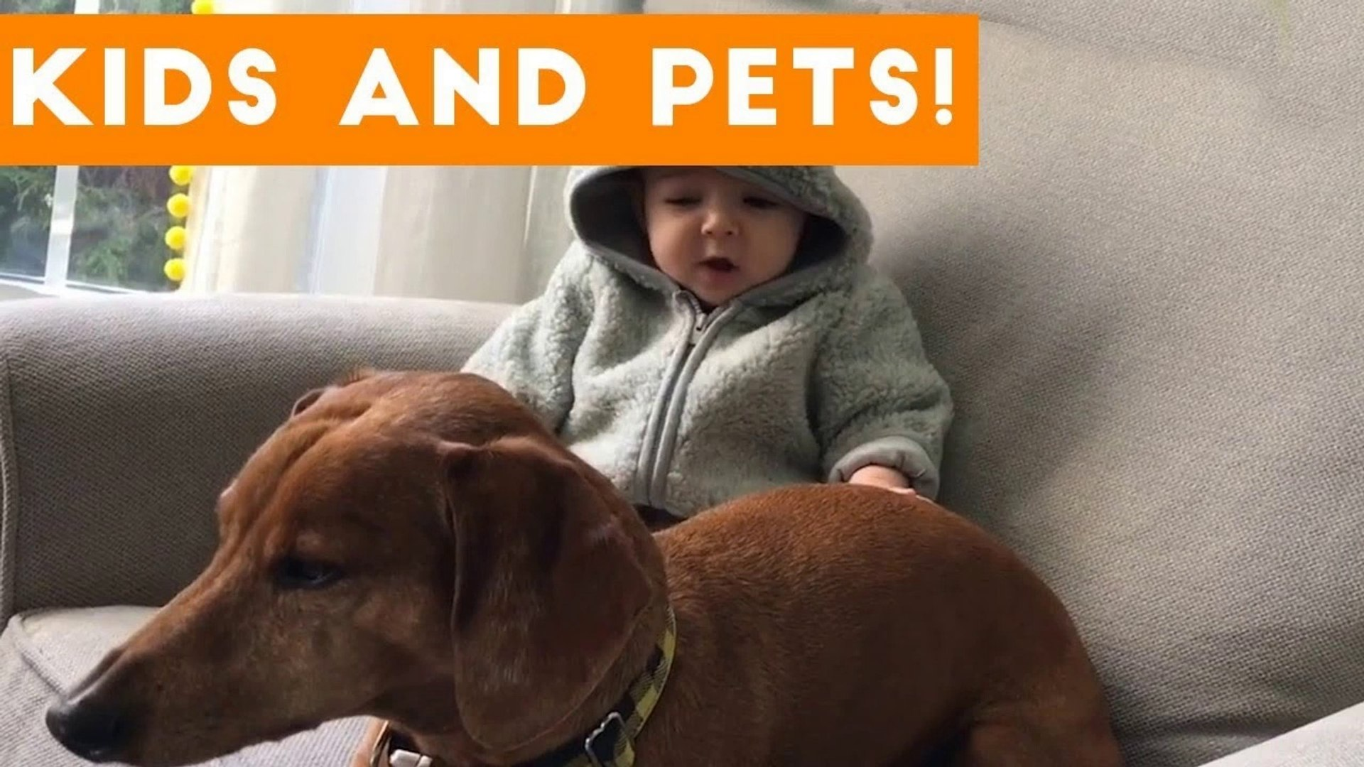 The Funniest Pets Meet The Cutest Kids & Babies of 2017 Weekly Compilation _ Funny Pet Videos