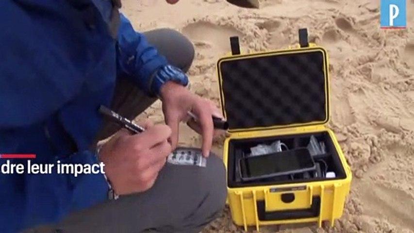 Deux étudiants à la chasse aux microplastiques sur le littoral aquitain