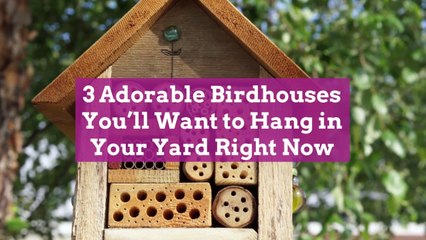 3 Adorable Birdhouses You'll Want to Hang in Your Yard Right Now