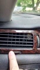 Regardez ce qu'elle a trouvé dans la ventilation de sa voiture... adorable
