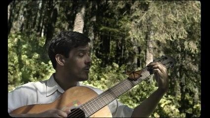 El David Aguilar - Mariposa Monarca