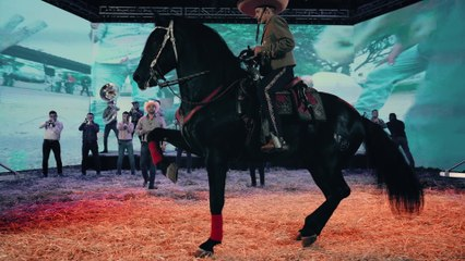 Banda Carnaval - El Herradero